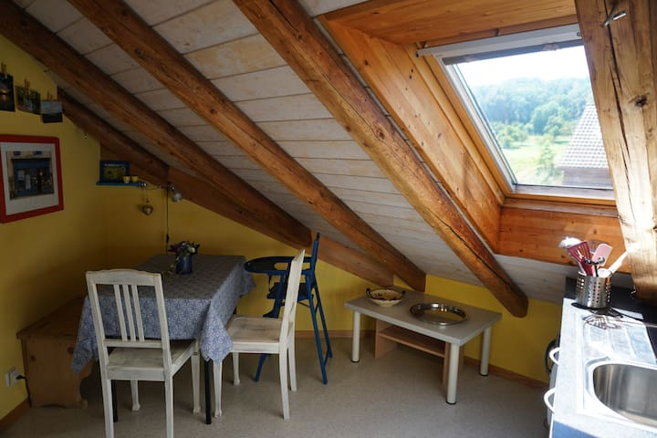 Cozy attic apartment in Hallwil