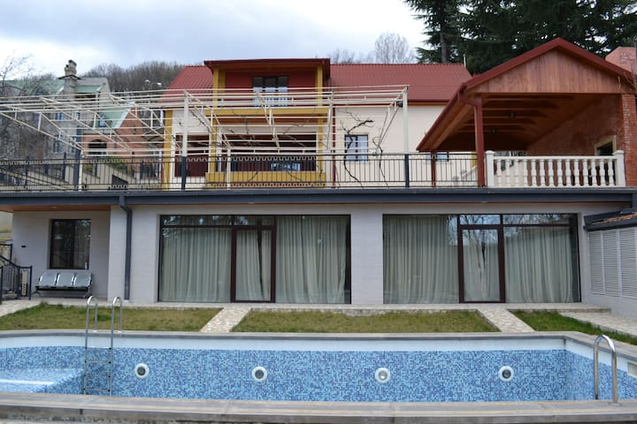 Charming and comfortable villa - Tbilisi