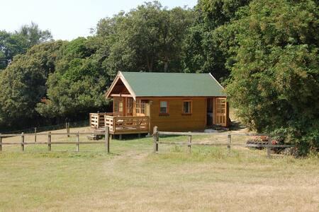 The Secret Log Cabin
