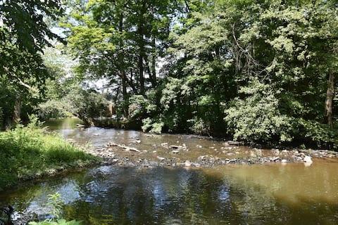 Chiques Creek Retreat  3 acres of restful woodland