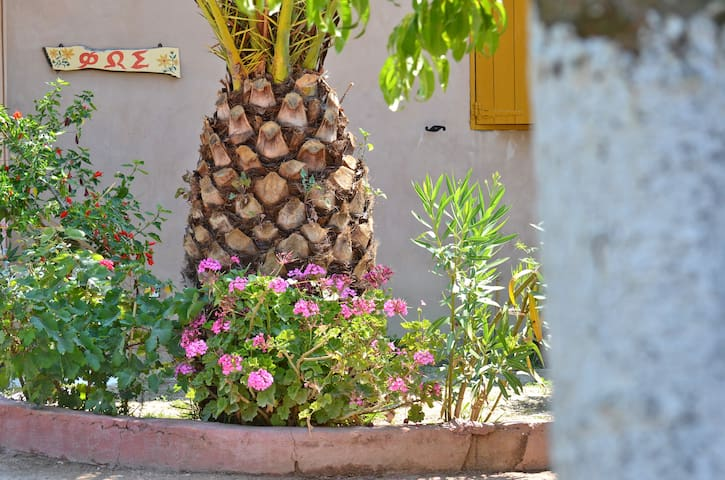 Therianos  Traditional  villa Fos