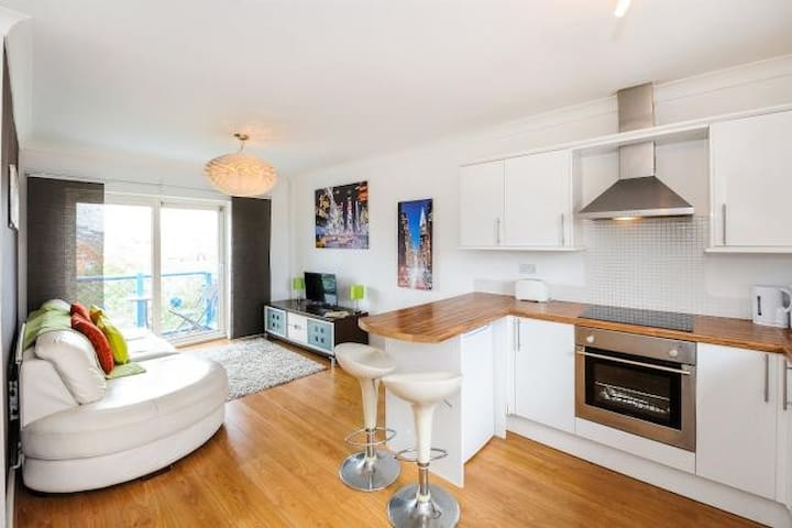 Swansea Marina Top Floor Apartment.  Beach/City