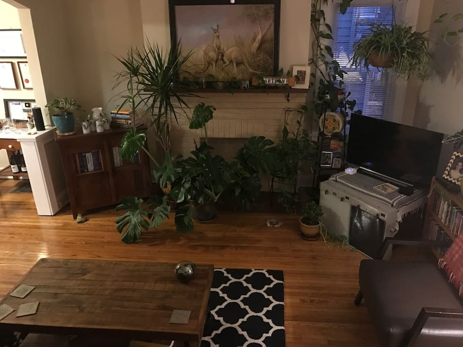 The Jungle and Lounge room w/ Apple TV.