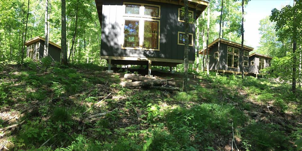 ROAM Adventure Basecamp - Cabin 2