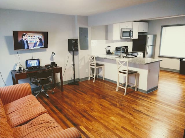 1BDR in VCU/Byrd Park area