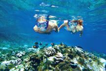 Snorkeling on nearest beach