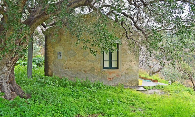 Casa Gioiosa, tipica casa Siciliana in campagna - Gioiosa marea - Huis