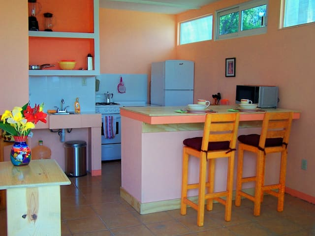 Cute apartment in a garden setting - San Juan Totolac - Appartement