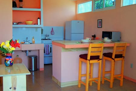 Cute apartment in a garden setting - San Juan Totolac