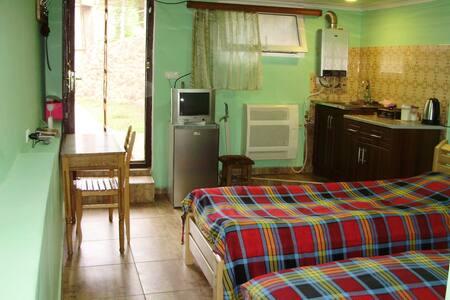 Guesthouse on Erekle 25a(эконом)