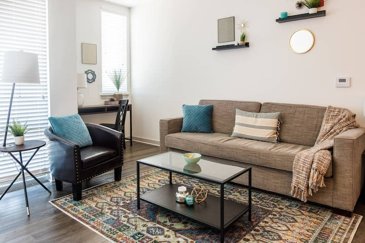UPSCALE 1BR APT IN HIP AND TRENDY MASS AVE AREA