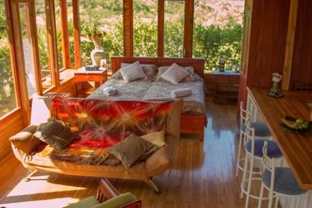 Beautiful Eco Suite