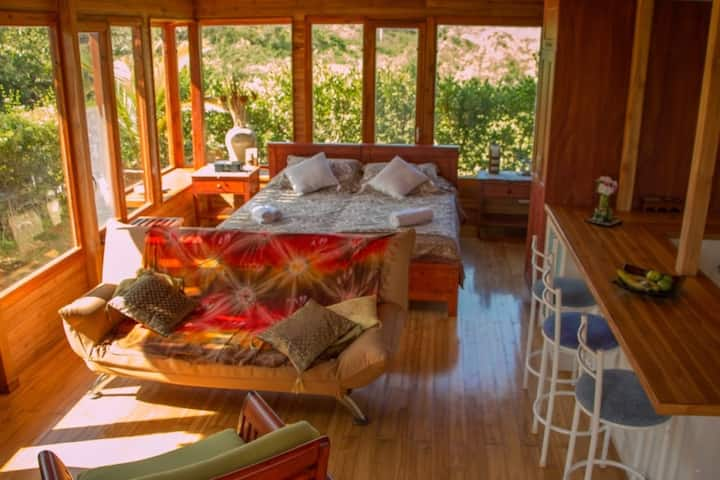 Beautiful Eco Suite