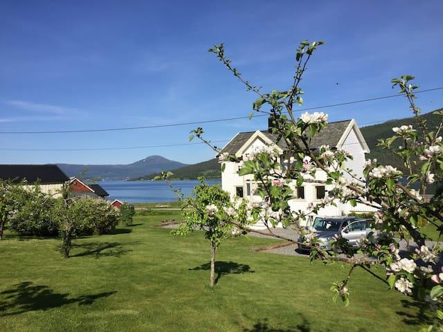Superkoselig sted tett ved fjorden
