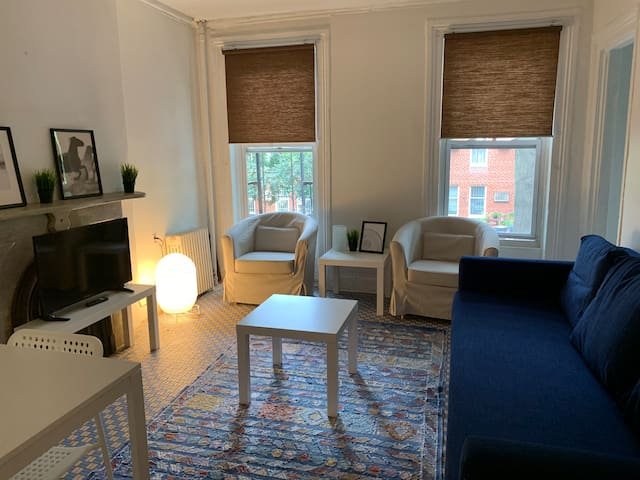 Cozy, cute and clean apt in a lovely area