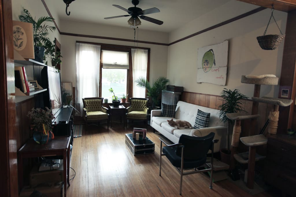 Cozy communal living room