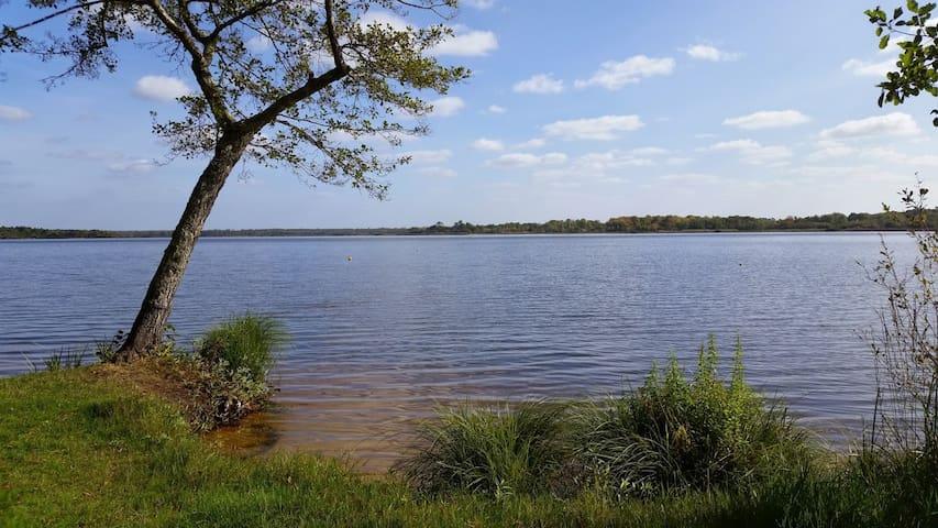 Maison au calme, proximité plage, lac & forêt ! - Pontenx-les-Forges - Dom