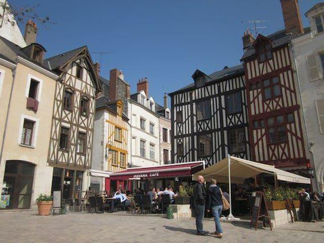 Appartement dans  vallée de Loire et ses Châteaux
