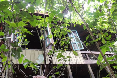 Deep Rainforest Native Cabin - Sarapiquí - Erdhaus