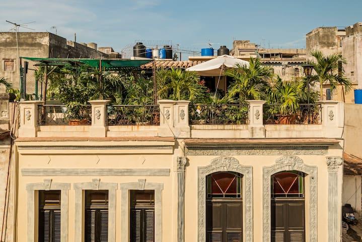 """Casa particular """" Casa del Artista""""  + terrace"""
