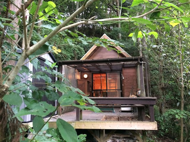 Surf gallery cabin in the forest - K