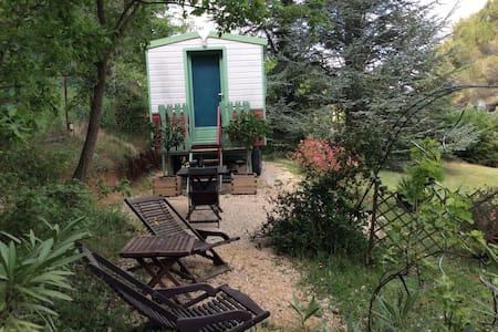 votre roulotte à aix en provence - Aix-en-Provence - Jiné