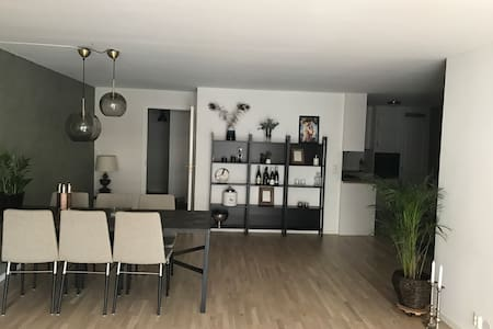Warm, spacious, relaxing APT at Skøyen(w parking) - Oslo - Pis