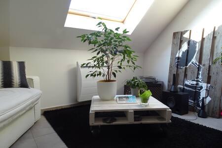 Duplex à 10 min du centre ville d'Amiens - Pont-de-Metz - Wohnung