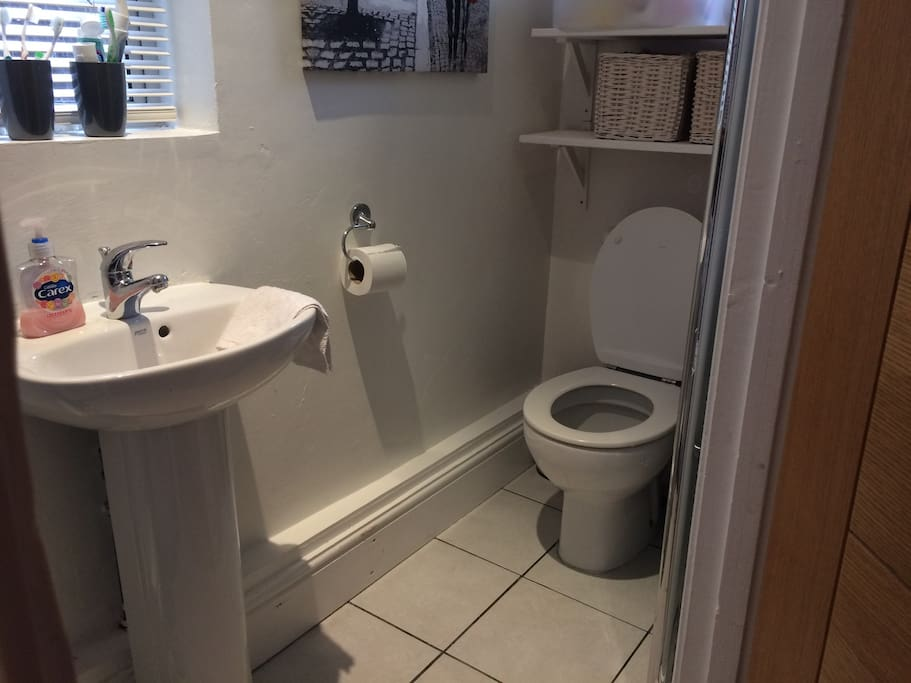 Ground floor toilet and utility room