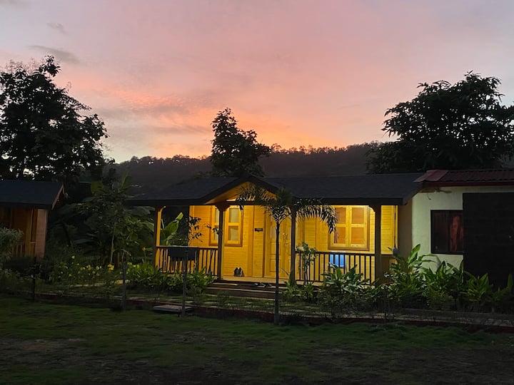 Karvanda farms_rose