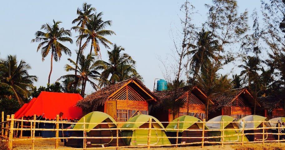 Campsite ⛺️
