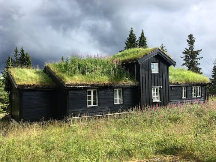 Stor og moderne hytte på Nordseter