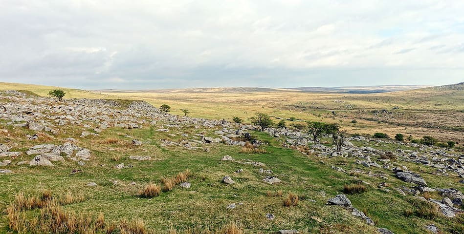 3 Bedroom House on Dartmoor backing on to the moor