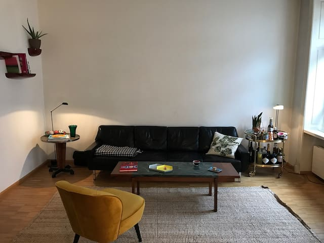 Lovely apartment in ideal location - Basel - Wohnung