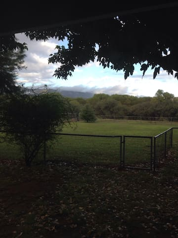 Horse pasture available