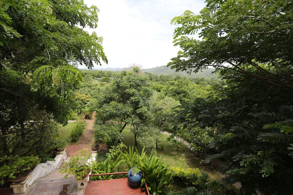 Farm view from 3rd floor balcony
