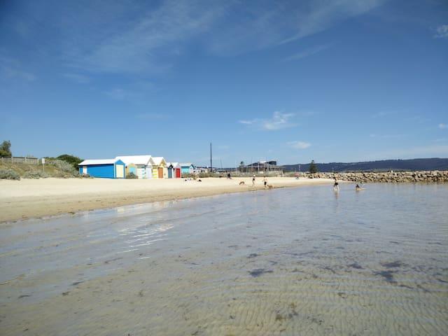 Safety Beach - Tassels Cove Off Lead Designated Dog Beach