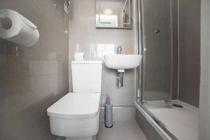 Luxury, private shower room with hand soap and body wash.