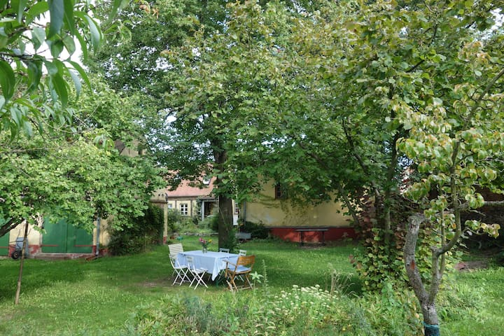 Swim, bike and relax in the Artist House Oderbruch