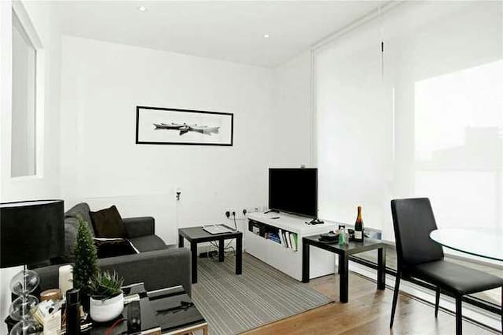 Extra Large Studio Apartment E14 - London - Apartment