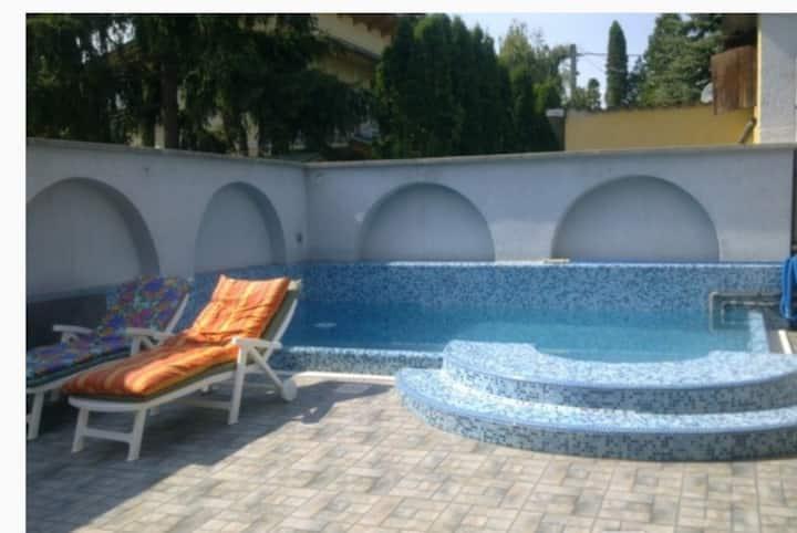 Premium villa with pool near to Balaton Sound