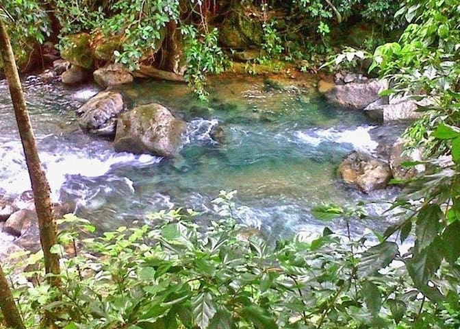 crystal clear river water of Dominica.
