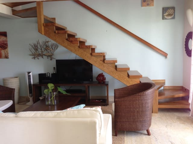 Two bedroom apartment on the beach - Las Terrenas - Apartemen