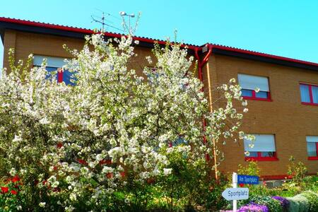 Bei Familie Pfleger - Gorxheimertal - Appartement