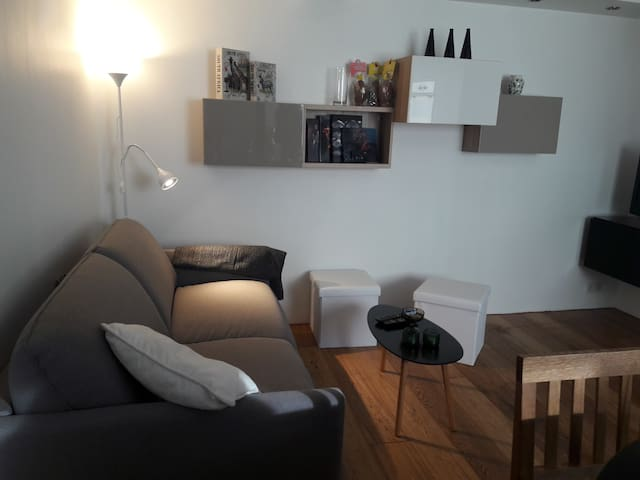Puffin Travel guesthouse - small and cosy 45m2 - Reykjavík - Apartament