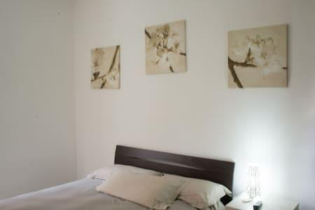 Fantastic room near VATICANO