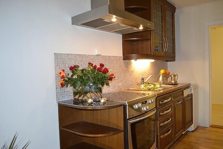 Åpen kjøkken løsning utstyrt med de nødvendige redskap.