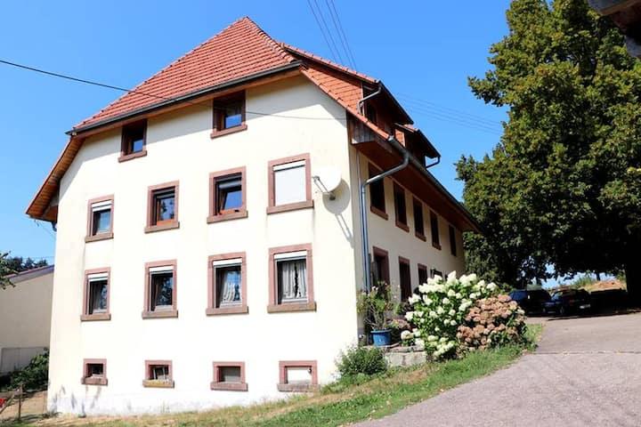 Adambauernhof, (Freiamt), Wohnung 2, 53qm, 1 Schlafraum, 1 Wohn-/Schlafraum, Dusche und WC