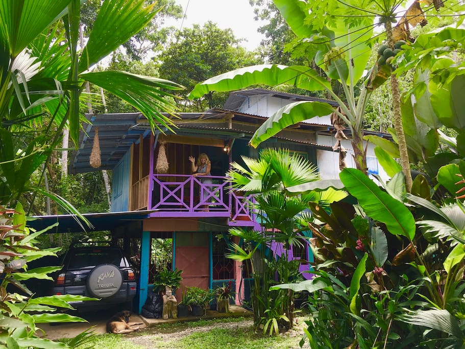 Bed And Breakfast Puerto Viejo Costa Rica