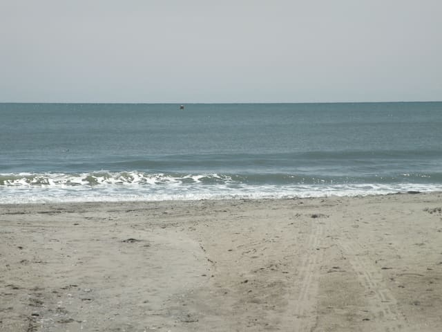 4th Floor Ocean View, GREAT ! Couples Get-A-Way ! - Myrtle Beach - Apto. en complejo residencial